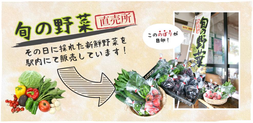 旬の野菜を販売中!